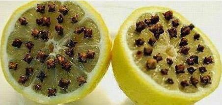 Citron a hřebíček - pokoj od komárů