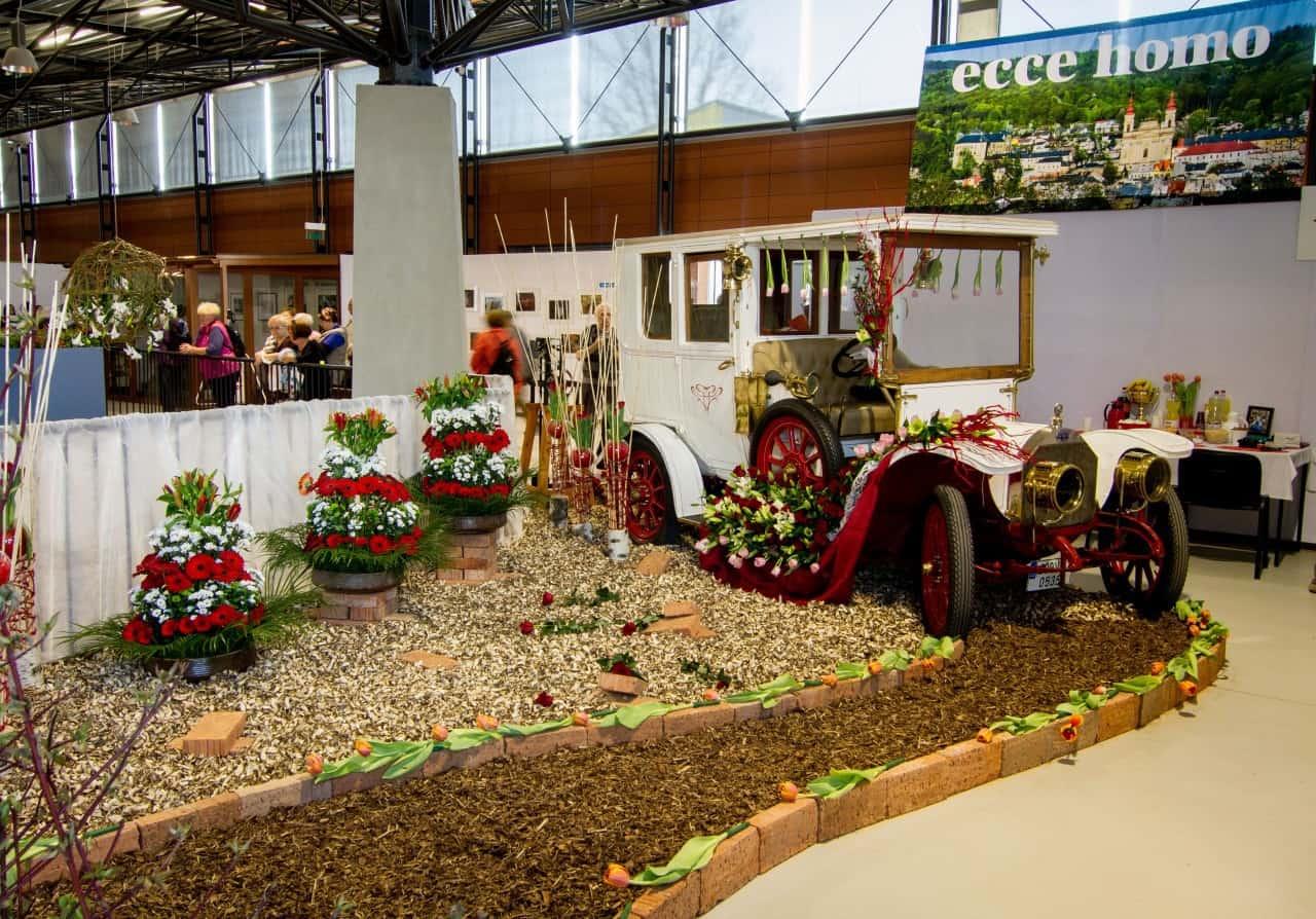 Flora Olomouc 2016 - jarní etapa (foto 2015-17)