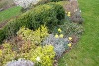 rostliny-ktere-rozzari-vasi-zahradu-i-na-konci-sezony-home-bydleni-12-11-2016