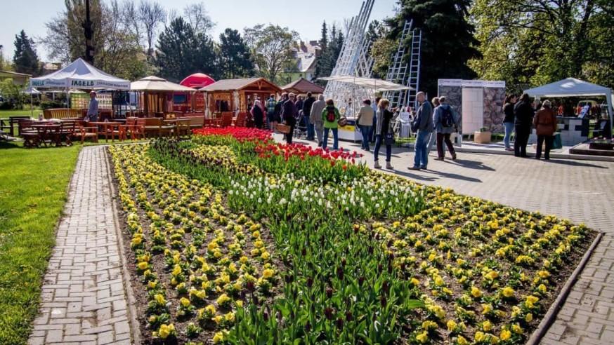 Jarní Flora Olomouc 2018 – symbolika narozeninové kytice
