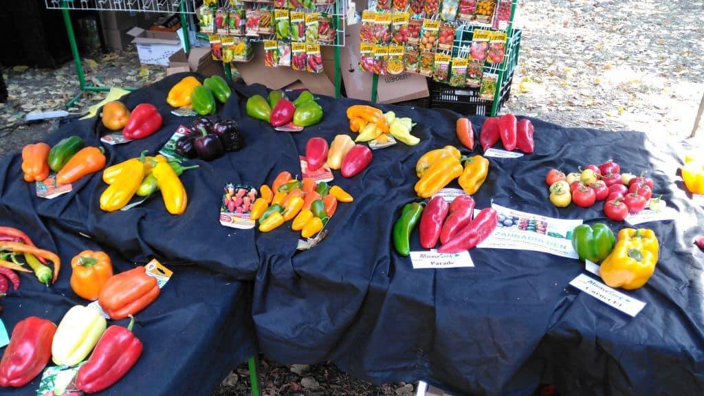 Letní Flora Olomouc 2018 - letní trhy, prodej zeleniny a semen