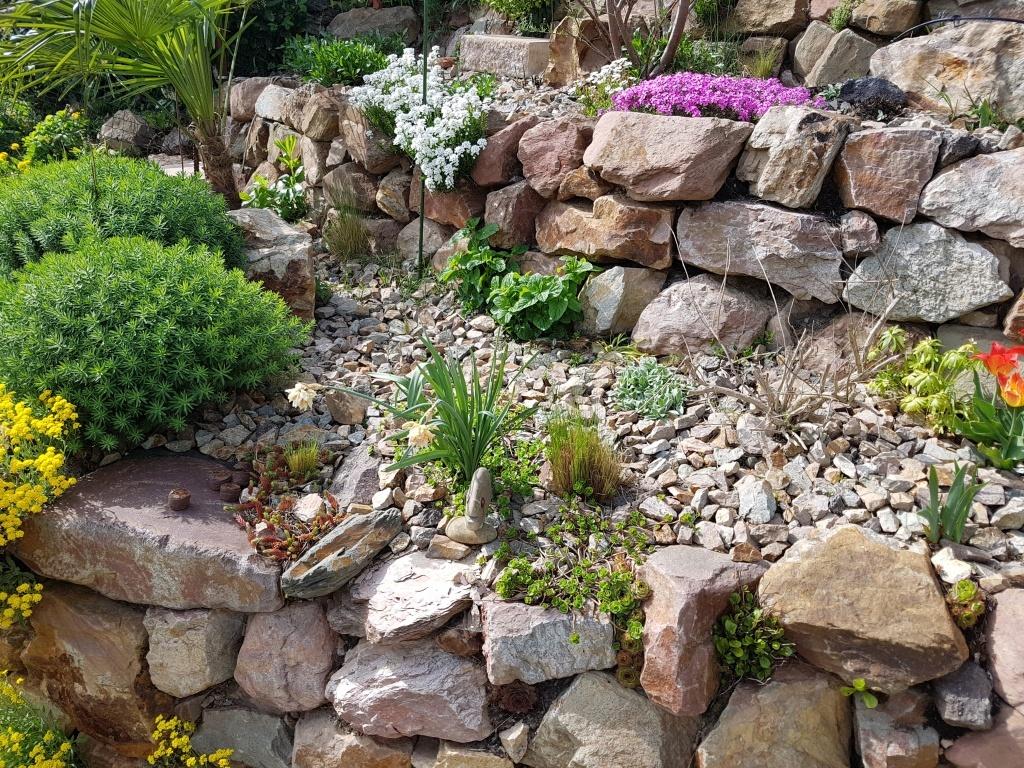 Členitá zahrada, skalka