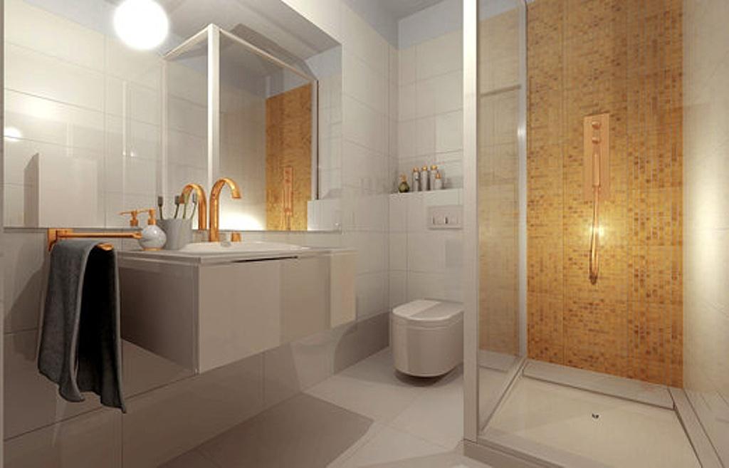 Dispoziční řešení - koupelna a WC (Sigma Plaza)