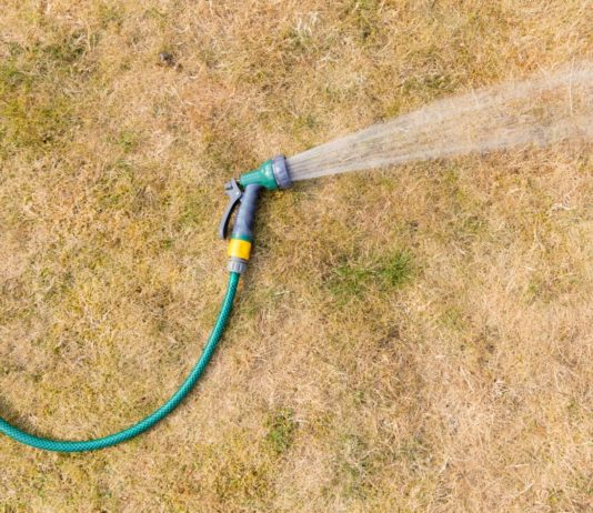 Sucho - suchý trávník a zálivka