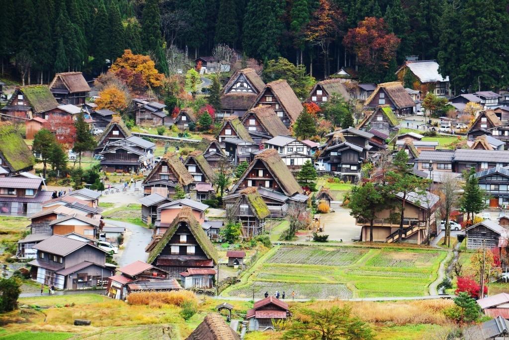 Domy se zelenými střechami v Japonsku
