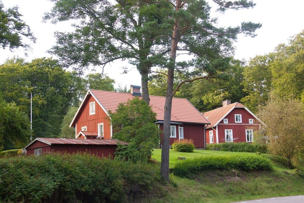 Dům se stromy