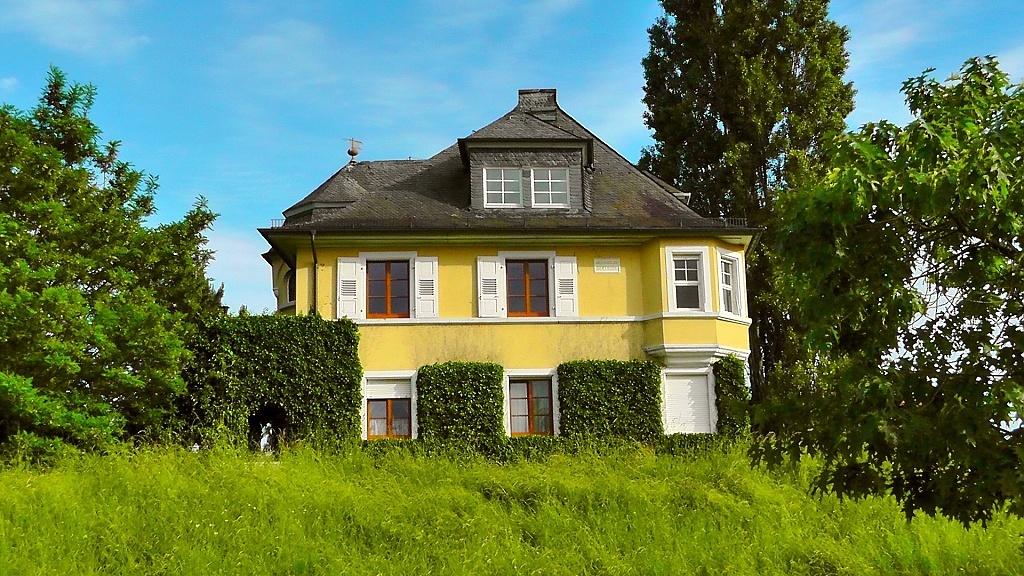 Dům se stromy a zelení