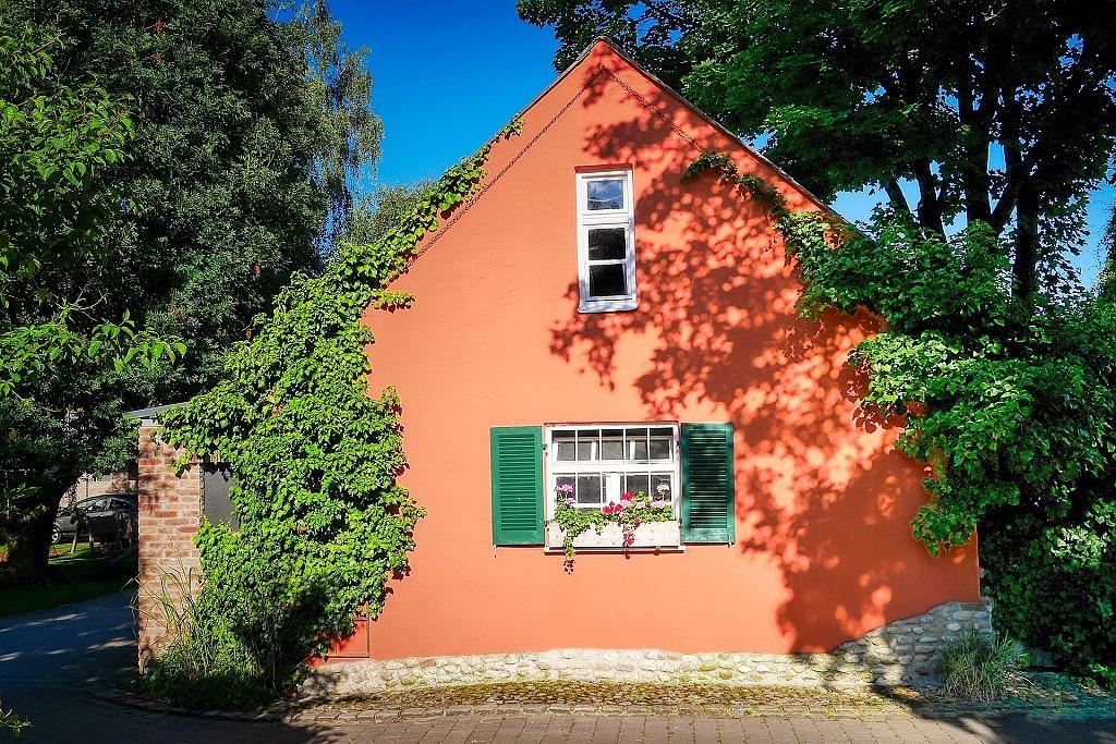 Dům se stromy, porostlý částečně zelení