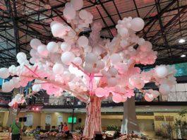 Podzimní Flora 2020 - strom života v hale A