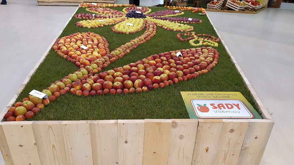 Podzimní Flora 2020 - expozice podzimních plodů v hale A (tvar květina)
